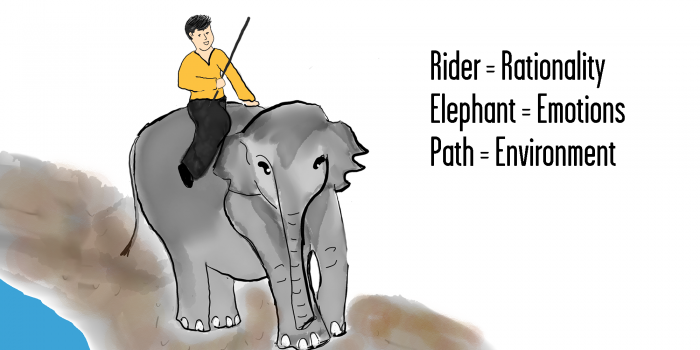 Rider, Elephant, Path - Leveraged Learning